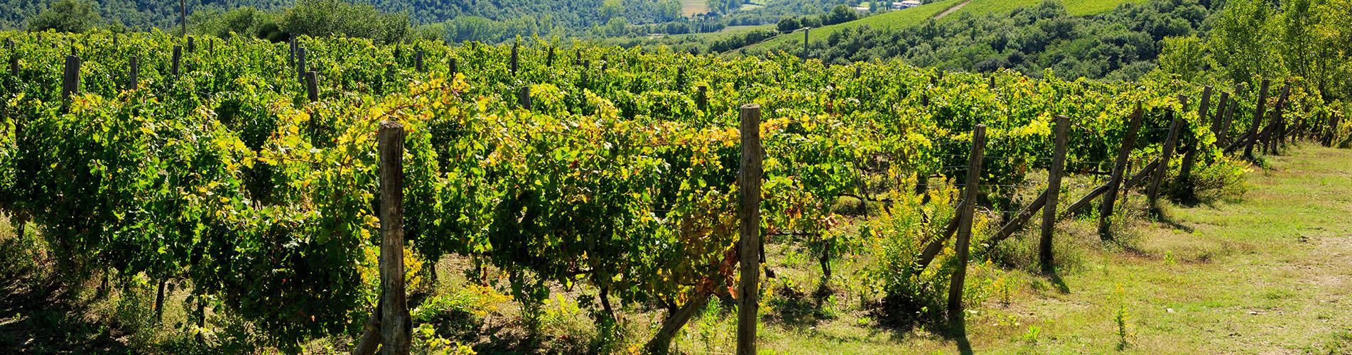 tuscany_slide1