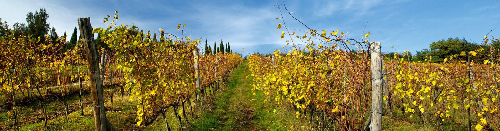 tuscany_slide3
